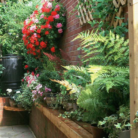 Garden ideas | Narrow Passageway | image.