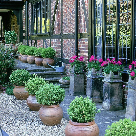 Formal garden with box balls garden idea for New garden ideas