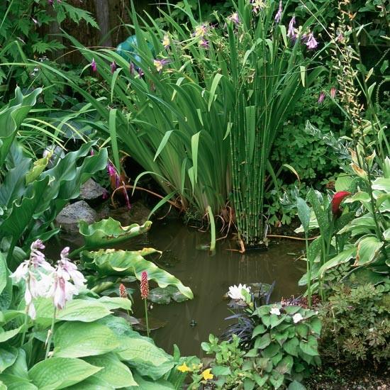 Garden pond feature | Garden design | Landscape ideas | Image | Housetohome