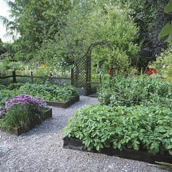Vegetable garden | Garden design | Decorating ideas | Image | Housetohome