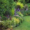 Get your garden beds summer ready