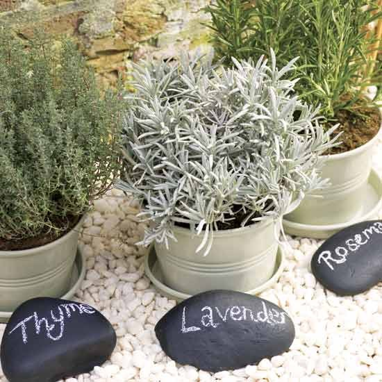 Give your garden a facelift with our quick and easy mini garden projects