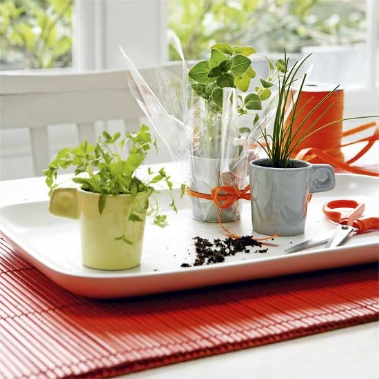 Housetohome shows you to create grow-your-own herb pots 