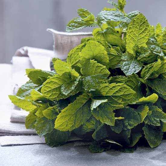 Grow your own mint with Homes & Garden's guide