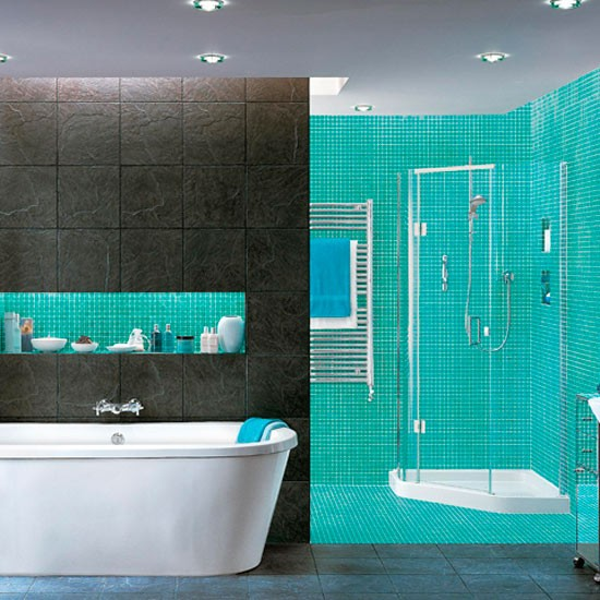 bathroom trends 2010 - trend 2010 - trends 2010 - decorating trend - image - housetohome.co.uk