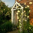 Get your garden looking gorgeous for spring
