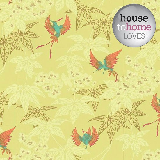 hummingbird wallpaper from Wallpaper Direct is perfect for spring