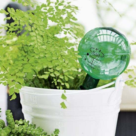 Try a self-watering system | Create the perfect garden room in 9 ...