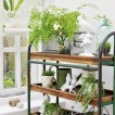 Open conservatory storage