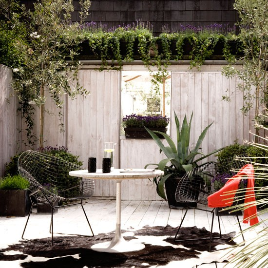 Urban Garden With Vertical Climbers And Oversized Pots