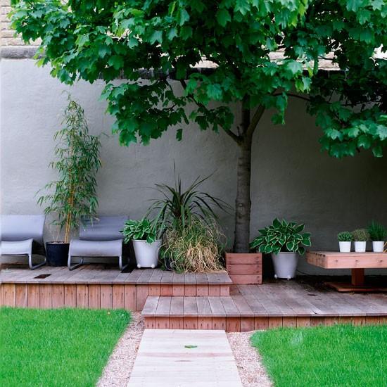 Tiered Contemporary Urban Garden: Contemporary Garden