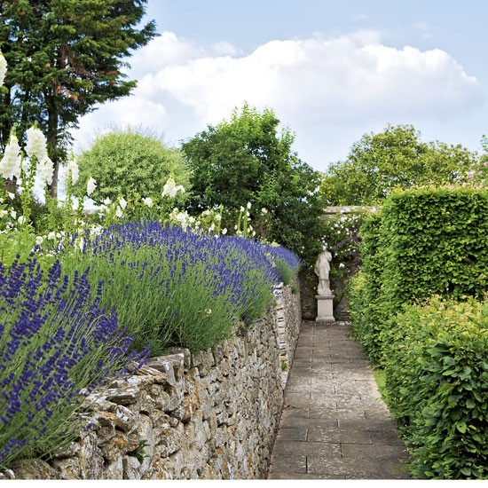 Beautiful walled garden