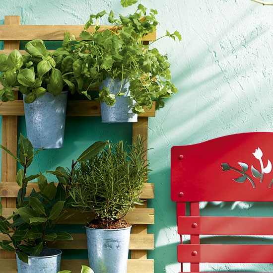 Wall-mounted herb garden against a turquoise wall with red folding chair