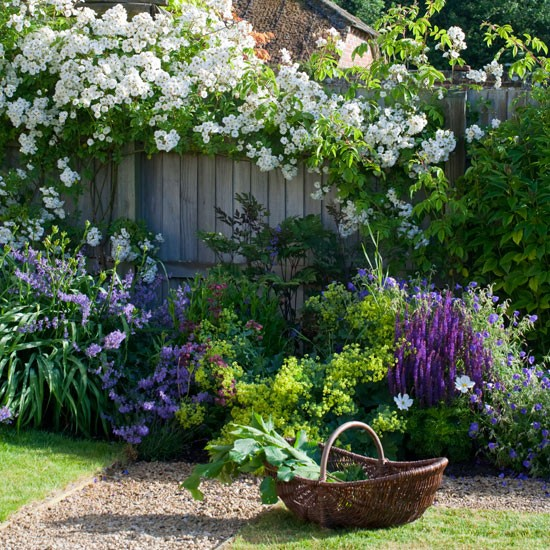 Colourful traditional garden plants | Traditional gardens | Garden design ideas | PHOTO GALLERY | Housetohome.co.uk