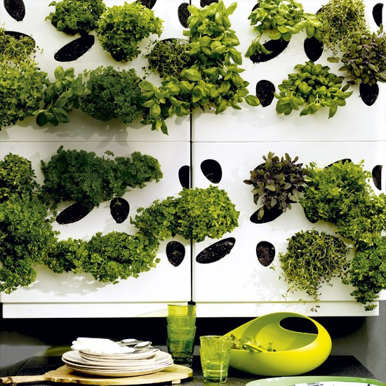 Urban herb garden | City garden | Growing herbs | housetohome.