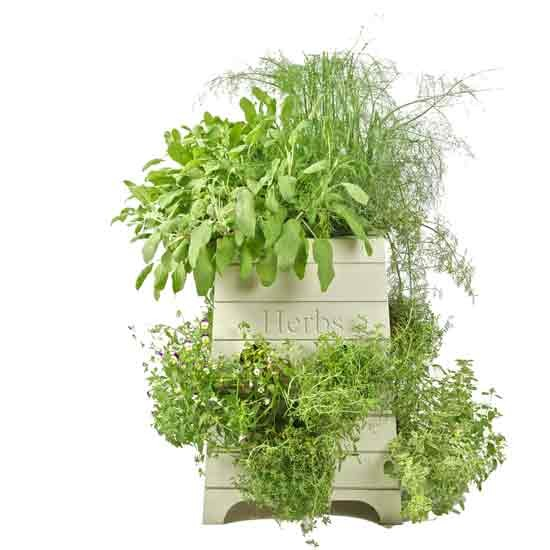 Beehive herb planter - Sparrow & Finch | Outdoor pots | Plant pot ...