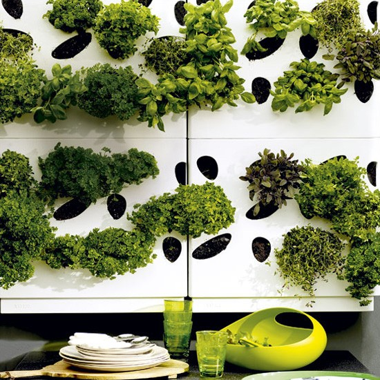 Easy garden transformations Herb garden wall ideas