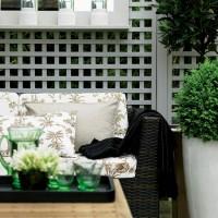 Garden trellis - 10 ideas