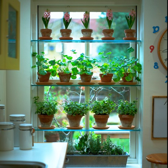 kitchen window plant shelves kitchen decor pinterest