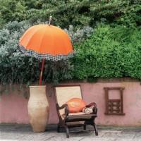 Colourful garden ideas