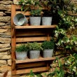 Wall-mounted rack with pots, £40, Notonthehighstreet.com