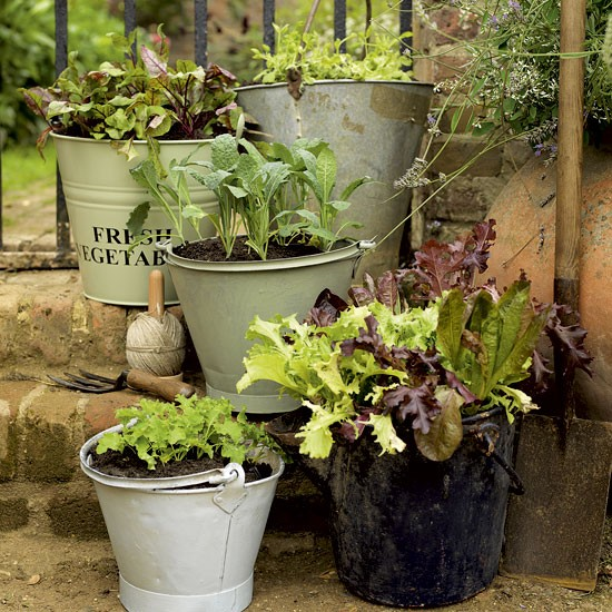 Assorted garden buckets