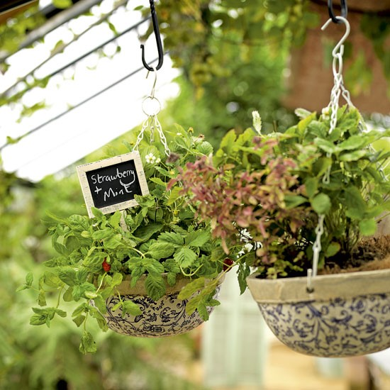 Hanging garden herb baskets | Garden inspiration | Ceramic Baskets | Image | Housetohome