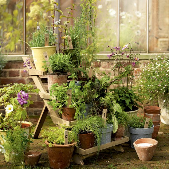 Garden potted plant display | Garden design | Terracotta pots | Image | Housetohome