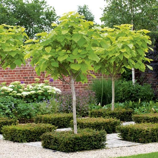 Checkboard squares garden   Planter   Garden inspiration   Image   Housetohome