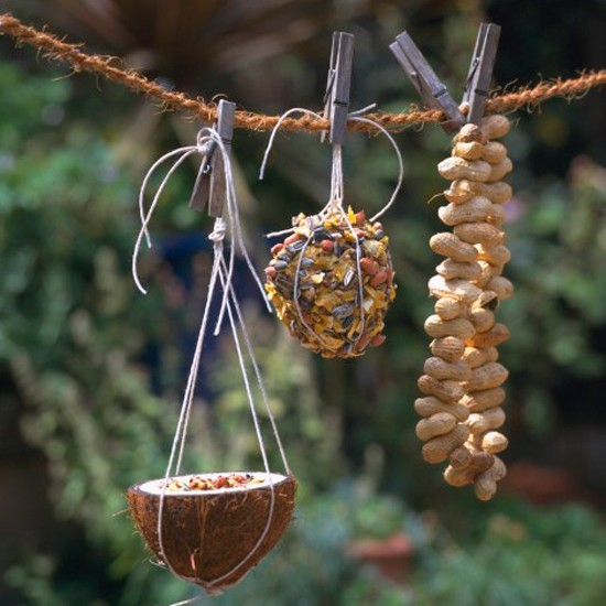 Feed the birds | December gardening ideas - 10 things to do ...