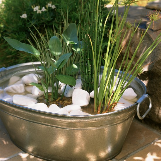 Plant up a container garden ideas photo gallery housetohome