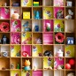 Children's bedroom with colourful type case storage