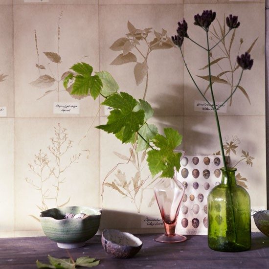 Faded botanical wallpaper with vases and plant cuttings | Design ideas | Housetohome | PHOTOGALLERY
