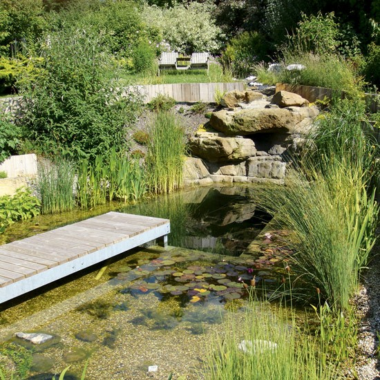 This stylish natural swimming pool was built by Anglo Swimming Ponds