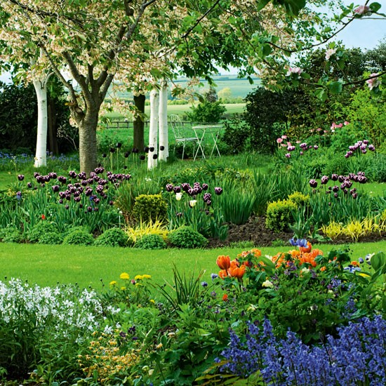 Choose bulbs for early colour Country gardens 10 of