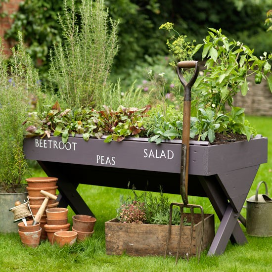 Grow your own | garden | country | Country Homes & Interiors