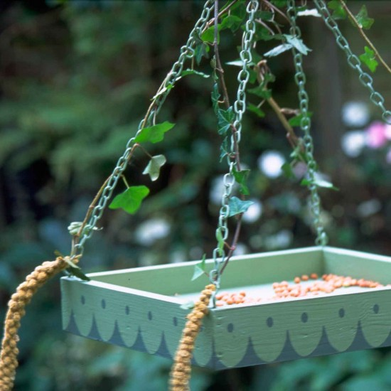 Bird feed jobs to do in the garden in april for Gardening jobs for april