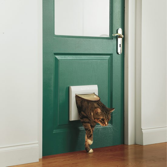 Staywell cat flap from Argos