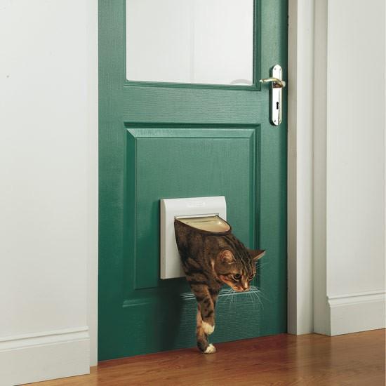 Diy Dog Door Flap Replacement: How To Install A Cat Flap