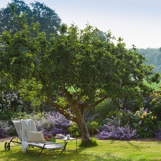 Orchard trees | Spacious Wiltshire garden | Cottage-style garden | Garden tour | Homes & Gardens | Housetohome | PHOTOGALLERY