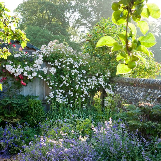 Cottage-style roses | Spacious Wiltshire garden | Cottage-style garden | Garden tour | Homes & Gardens | Housetohome | PHOTOGALLERY