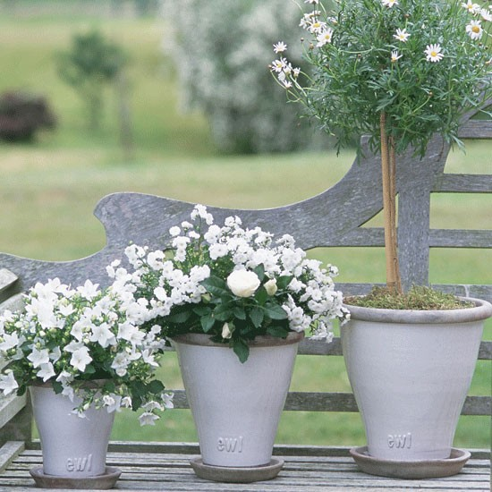 Potted pleasures | Country garden ideas | Homes & Gardens | Housetohome | PHOTOGALLERY