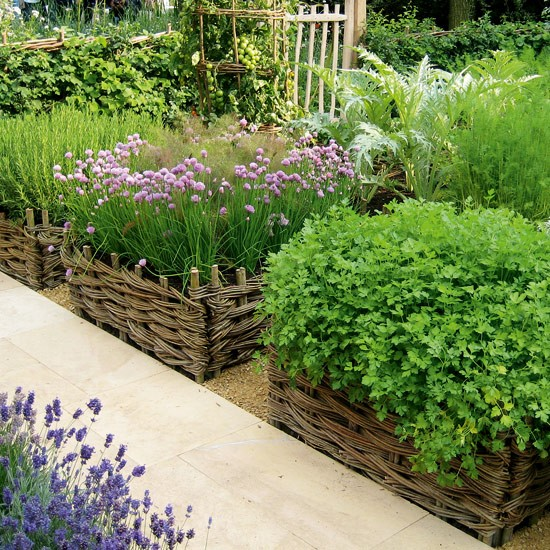 Vegetable Garden Border Ideas Photograph Vegetable Garden - veg garden design colorado