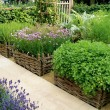 Site your vegetable garden in an open, sunny and sheltered place