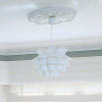 Once you have fitted your ceiling rose add a striking light fitting to make a statement