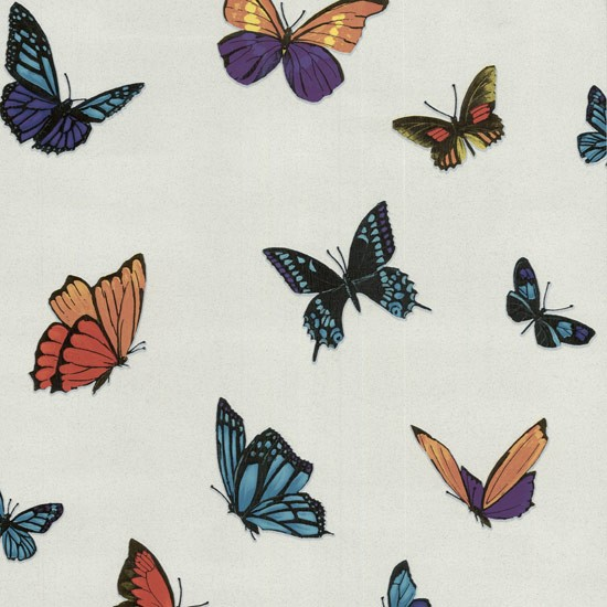 Flutterby by julien macdonald wallpaper from graham for Flutterby wallpaper
