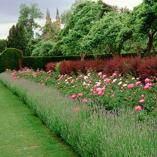 Double depth herbaceous borders classic garden ideas for Classic house with flower garden