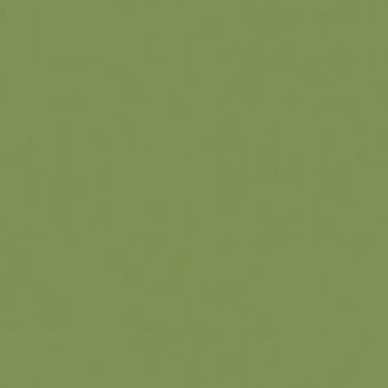 The 25 Best Olive Green Paints Ideas On Pinterest: Olive Green Paint Colors Gallery