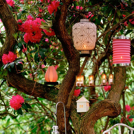 Pink and red lanterns hanging from tree branch