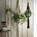 6 brilliant ways to display plants